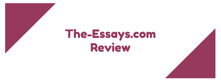 the-essays.com review