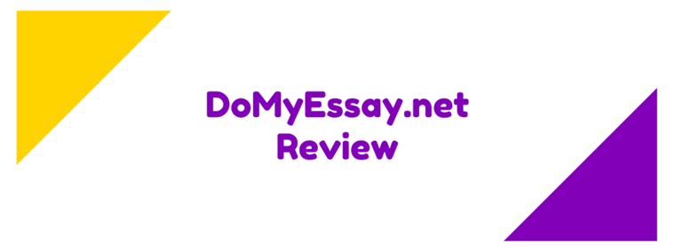 domyessay.net review