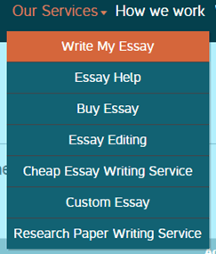 domyessays.com services
