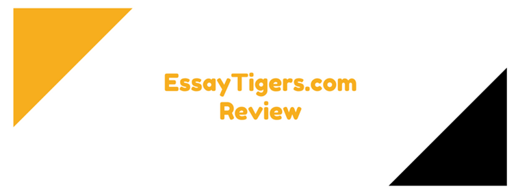 essaytigers.com review