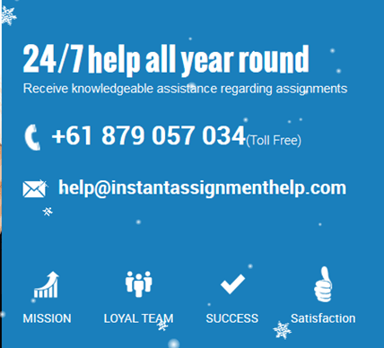 instantassignmenthelp.com customer support