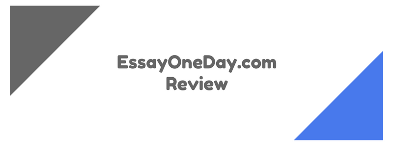 essayoneday.com review