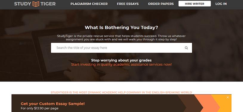 studytiger.com website