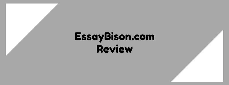 essaybison.com review