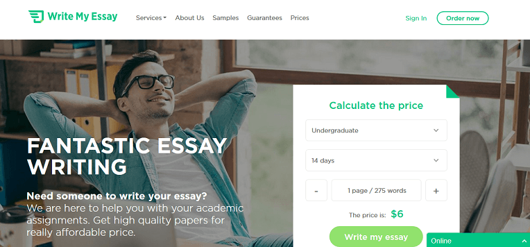 Essay writing service - custom essays in 3 hours or less
